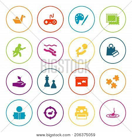 Collection Of Payment, Playing, Jigsaw And Other Elements.  Set Of 16 Hobbie Icons Set.