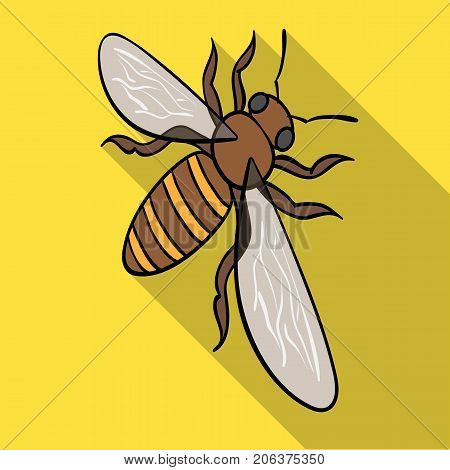 A bee, a hymenopteran insect. Stinging insect bee single icon in flat style vector symbol stock isometric illustration .