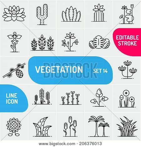 Vegetation line icons, large icons set of flowers and plants.
