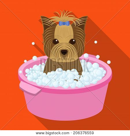 Bathing pet puppy in a bowl. dog, Pet, dog care single icon in flat style vector symbol stock illustration .