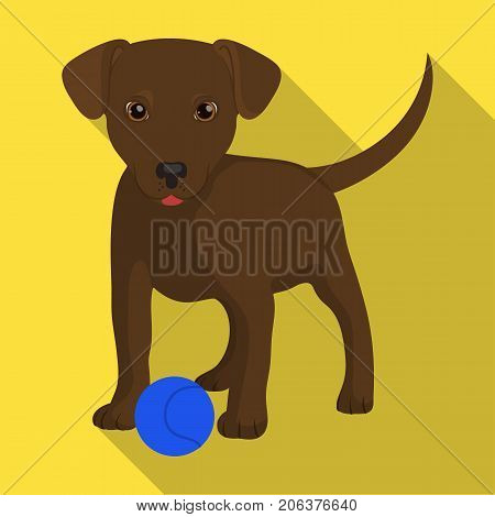 Pet, puppy dog with a ball. Pet, dog care single icon in flat style vector symbol stock illustration .