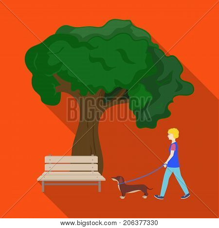 Tree and bench, woman walks a pet in the park. Pet, Dog care single icon in flat style vector symbol stock illustration .