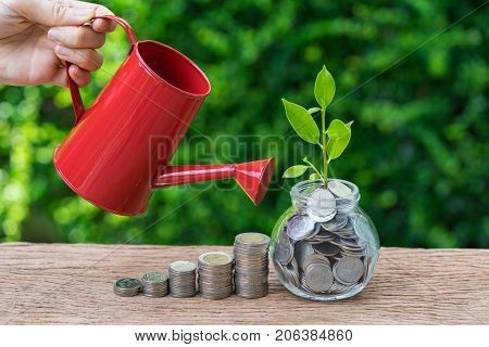 hand watering stack of coins and growth sprout plant as business finance or growth investment concept.