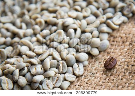 Coffee Beans Background Group Of Green And Roasted Arabica Coffee Beans Concept Of Coffee State And