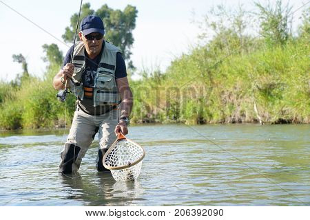 Fly fisherman catching trout in river