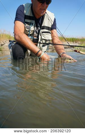 Fly fisherman holding brown trout in river