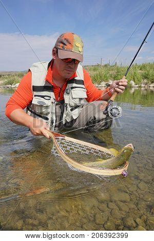Fly fisherman in river of Montana catching brown trout