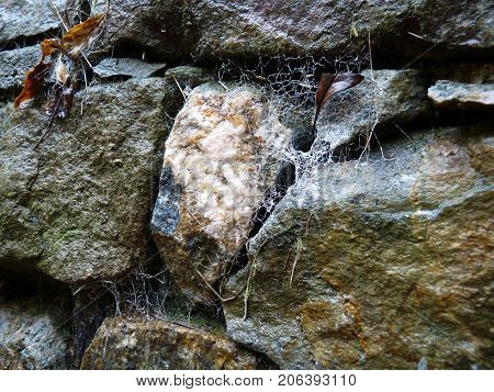 Old stone wall with the cobwebs .