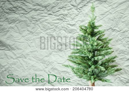Crumpled Paper Background WIth English Text Save The Date. Christmas Tree Or Fir Tree In Front Of Textured Background.