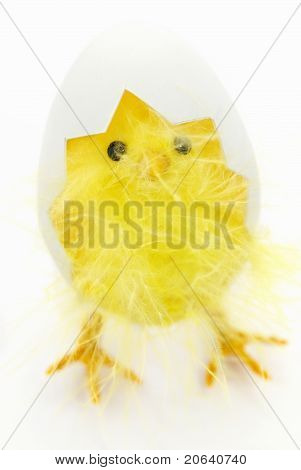 Easter Decoration - Chicken