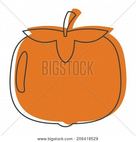 Persimmon in doodle style icons vector illustration for design and web isolated on white background. Persimmon vector object for labels and logo