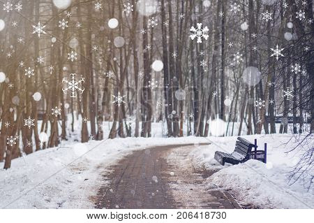 Beautiful calm scene of snowfall in winter park. Falling snowflakes in the winter morning. Christmas morning. Morning of the New Year.