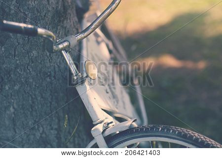 Close-up of a vintage rustic bicycle standing by a tree. Toned photo