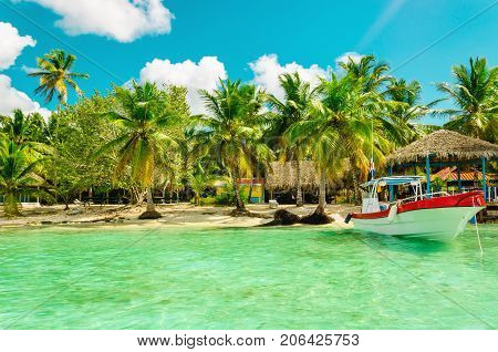 Amazing exotic full of high palm tree beach with colorful boat in the foreground, Dominican Republic, Caribbean Islands, Central America