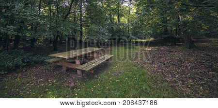Wooden Picknick Table In Forest In Public Park.