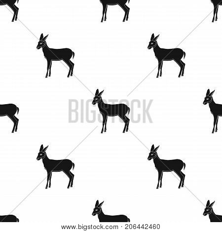 A young, wild antelope. A wild-footed animal of an antelope single icon in black style vector symbol stock illustration .