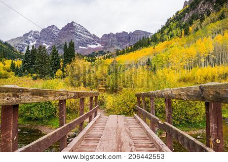 This is the pictures of a bridge crossing to Aspen trees with golden yellow leaves with mountains