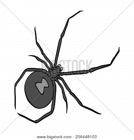 An arthropod bug is an insect.A spider, a predatory insect single icon in monochrome style vector symbol stock isometric illustration .