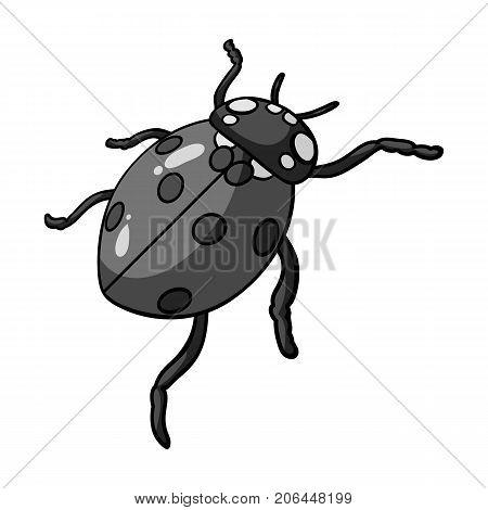 Ladybug is an arthropod.The insect beetle, ladybug single icon in monochrome style vector symbol stock isometric illustration .