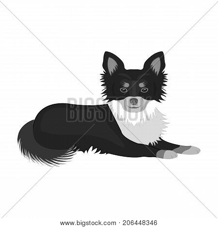 A pet, a lying dog. Pet, dog care single icon in monochromt style vector symbol stock illustration .