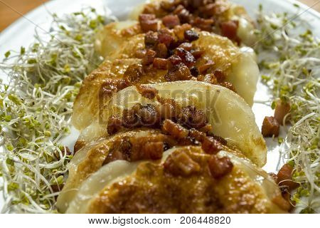 Fried dumplings with cheese and pork scratching on wooden table. Polish ukrainian russian traditional food.Fried dumplings with cheese and pork scratching on wooden table. Polish ukrainian russian traditional food. Selective focus.
