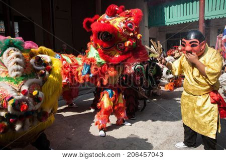 Chinese New Year, The Lion Dance