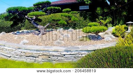 Landscaping desert oasis made with pebble rocks, landscape trees