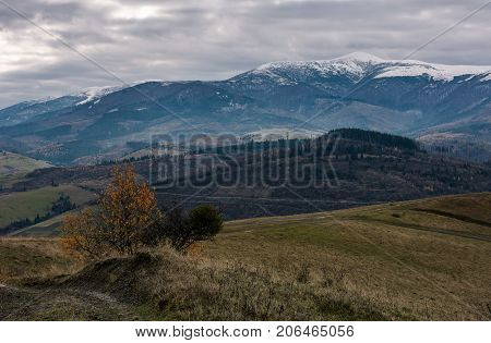 Rolling Hill With Mountain Ridge In Late Autumn