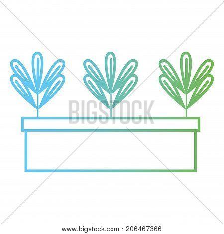 line ecological plant with leaves inside flowerpot vector illustration