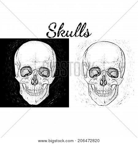 Set. Black and white skulls. Hand-drawn style