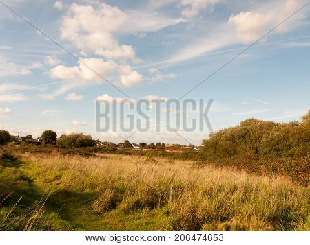 Summer Lush Meadow Grassland Scene Outside With Houses In Far Distance