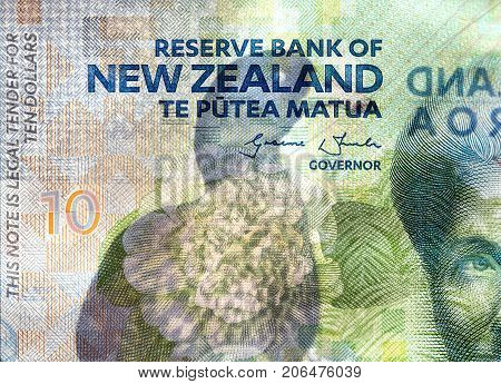 Close  up of a New Zealand ten dollar banknote
