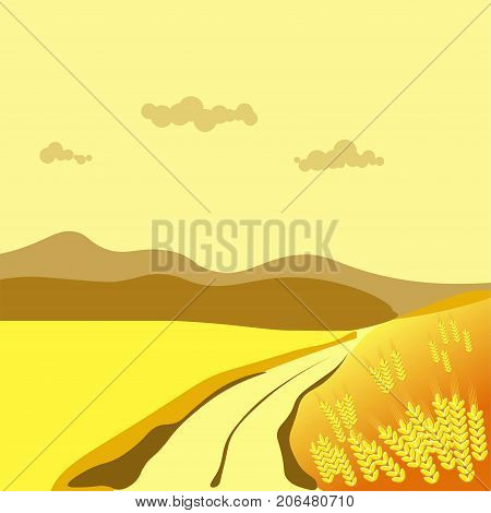 Summer or autumn season day landscape of road along wheat field in valley. Vector flat background for four seasons nature scenery concept