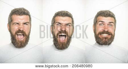 Guy collage with different emotions isolated on white. Man with long beard and mustache on scared happy and angry face. Emotion set of bearded man. Barber fashion and beauty. Feeling and emotions.