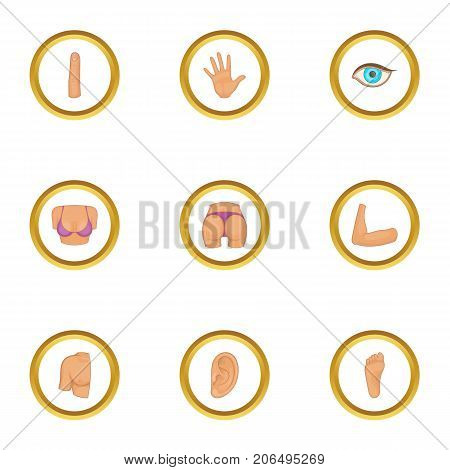 Parts of body icons set. Cartoon style set of 9 parts of body vector icons for web design