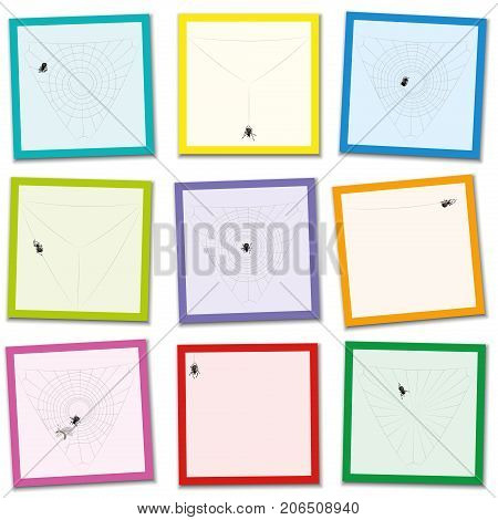 Spider web construction steps - bring the mixed up colored cards in the right order from the appearance of the little spider to the captured prey. Educational game fun for kids of all ages.