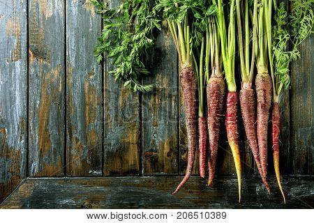 Bundle Of Purple Carrot