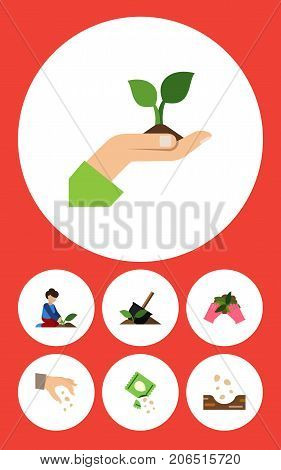 Flat Icon Seed Set Of Florist, Seed, Sow And Other Vector Objects