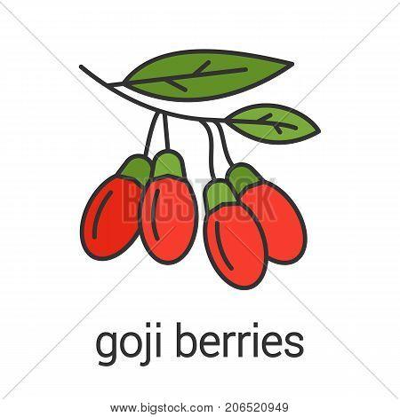 Goji berries color icon. Flavoring, seasoning. Goji tree branch. Isolated vector illustration