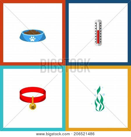 Flat Icon Pets Set Of Cat  Eating, Kitty Collar, Temperature Measurement And Other Vector Objects