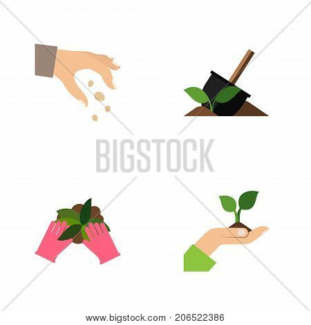Flat Icon Sow Set Of Care, Sow, Soil And Other Vector Objects