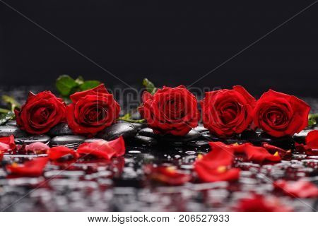 Set of Red rose ,petals and therapy stones