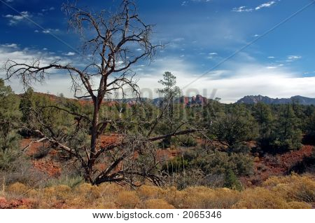 Sedona Mountains In Early Morning