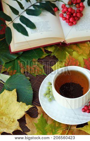Earl grey tea with book and rowan on the table