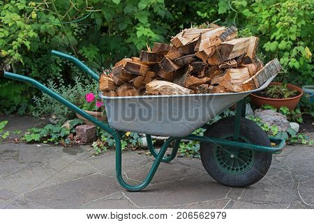 hand barrow full loaded with splitted firewood standing on patio in the garden
