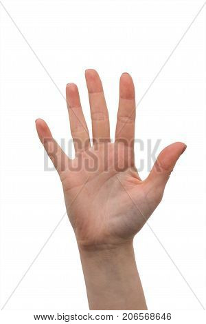 Woman hand palm isolated on white background. Hand symbol that means five. Human hand is showing five fingers. Female hand making sign. Skin of open hands on manicure