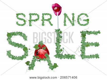 Spring sale concept from the leaves in spring and summer style. Word SALE with strawberries grapes and clover women's lips with lollipop and girl mouth with red lipstick isolated on white background