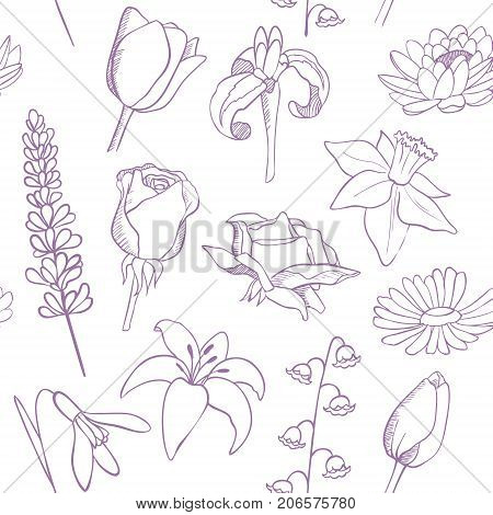 flowers sketch seamless vector pattern, floral background