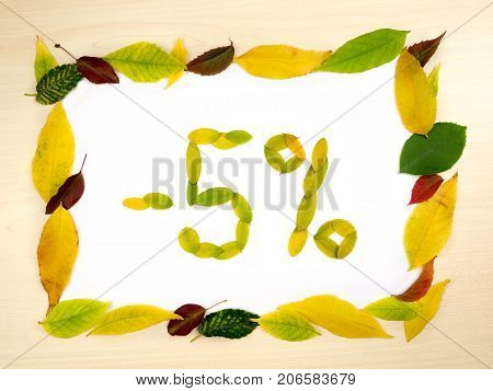 Word 5 percent made of autumn leaves inside of frame of autumn leaves on wood background. Five percent sale. Autumn sale template