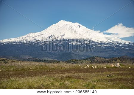 Mt Shasta covered in snow springtime 2017
